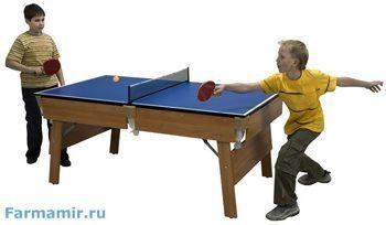 Столы для настольного тенниса купить в Москве,Санкт Петербурге.Интернет магазин Фармамир.