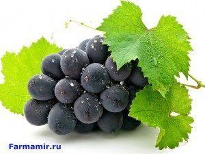 виноград от холестирина