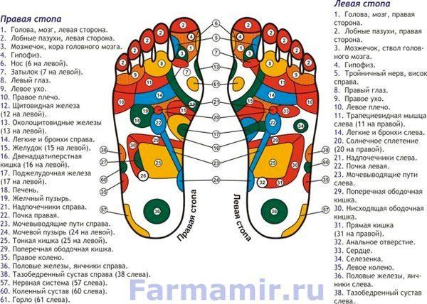 акупунктурные точки ног