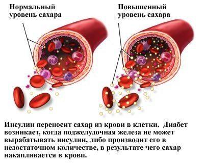 вне зависимости от путей поступления, накапливается в жидкой составляющей крови
