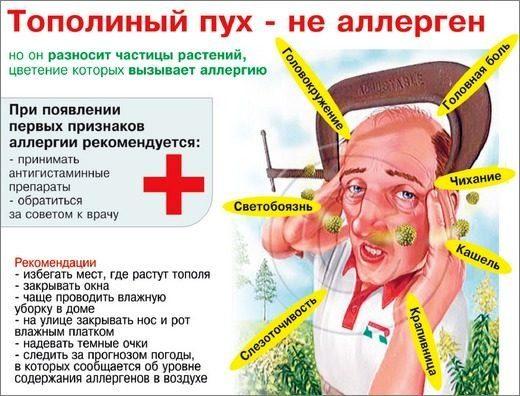 Предупреждение аллергии на пыльцу