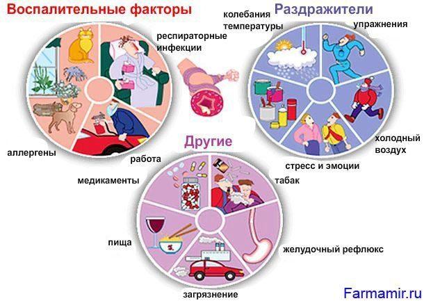 Бронхиальная астма Этиология