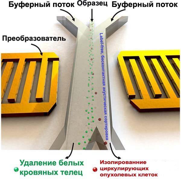 ctc-separator