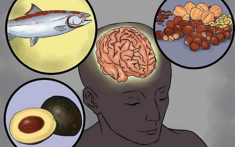 защиты головного мозга от старения