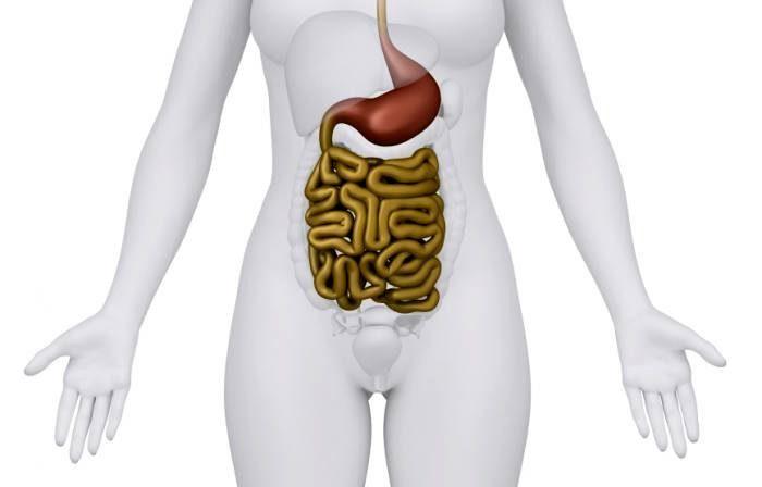 Исследователи говорят, что стресс в начале жизни может вызвать изменения кишечных бактерий, что приводит к развитию тревоги и депрессии в зрелом возрасте.