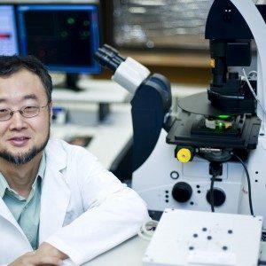 Исследование обнаружило, что витамин А направляет иммунные клетки в кишечник