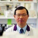Исследование на мышах может выявить новые способы лечения иммунной тромбоцитопении