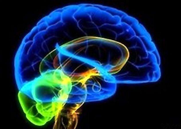 Алкоголь Определение изменений головного мозга