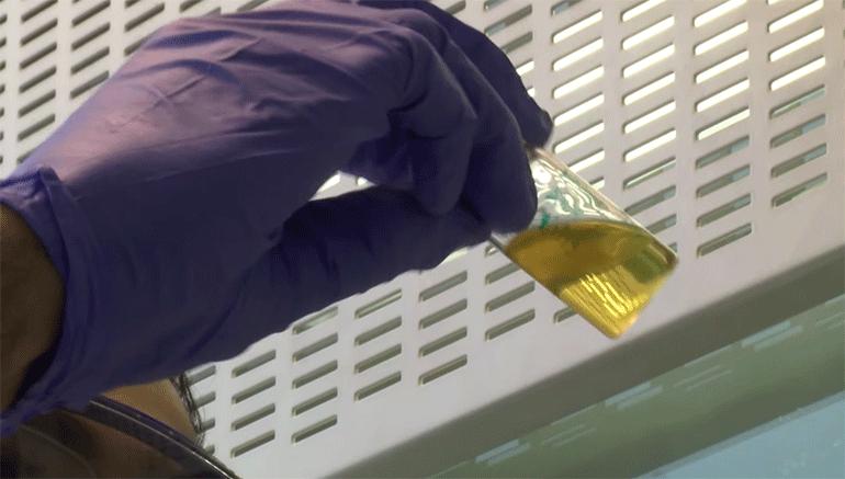 полимер-для-стволовых клеток