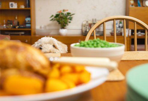 домашние блюда