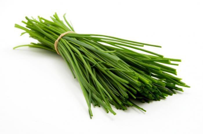 зеленый лук полезные ствойства