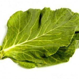 Какими полезными для здоровья свойствами обладает листовая капуста?