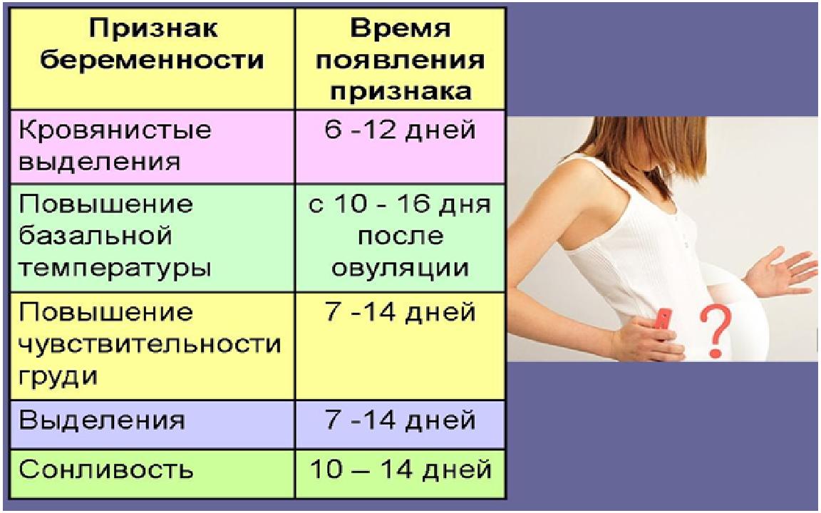 основные симптомы беременности