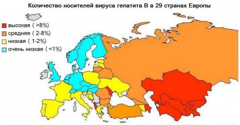 Количество носителей вируса гепатита B