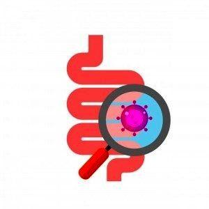 Кишечные бактерии и мозг: нас контролируют микробы?