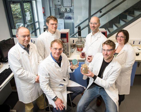 Команда исследователей