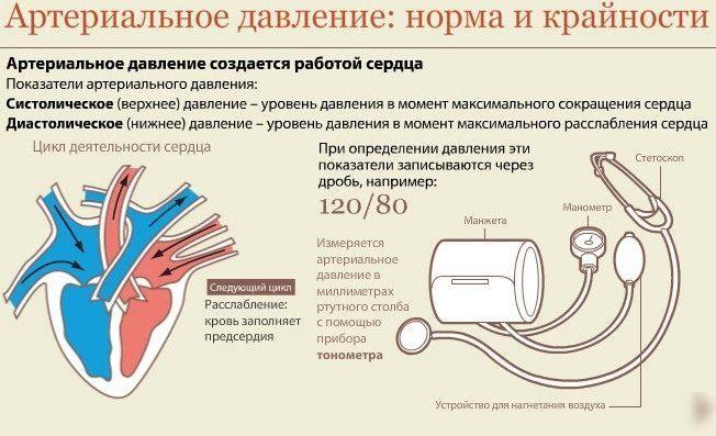 Как диагностировать артериальную гипертензию