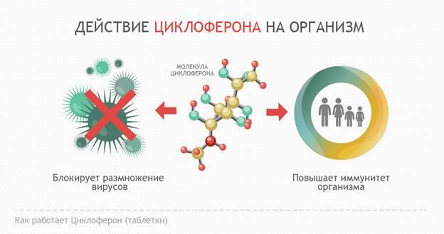 Действие Циклоферона и других противовирусных средств на патогенные вирусы и организм человека