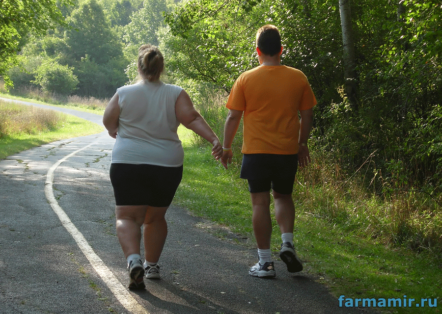 ходьба для похудения сжигаме жиры