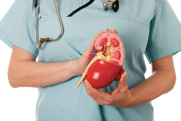 Лечение артериальной гипертензии при хпн