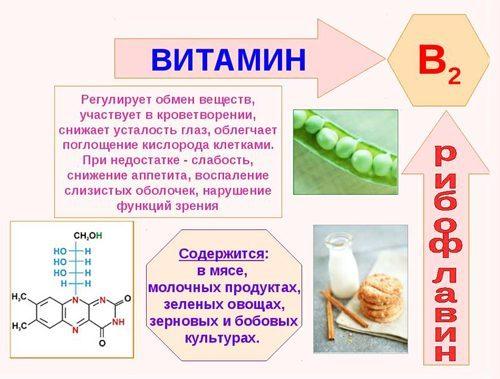 Витамин В2 (вит. В2)