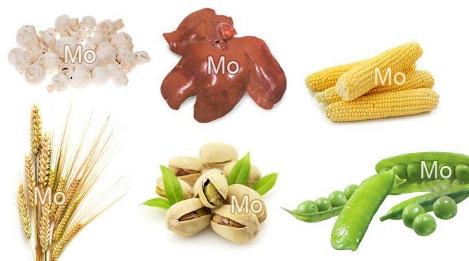 продукты молибден