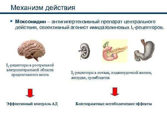 Максодиний механизм действия
