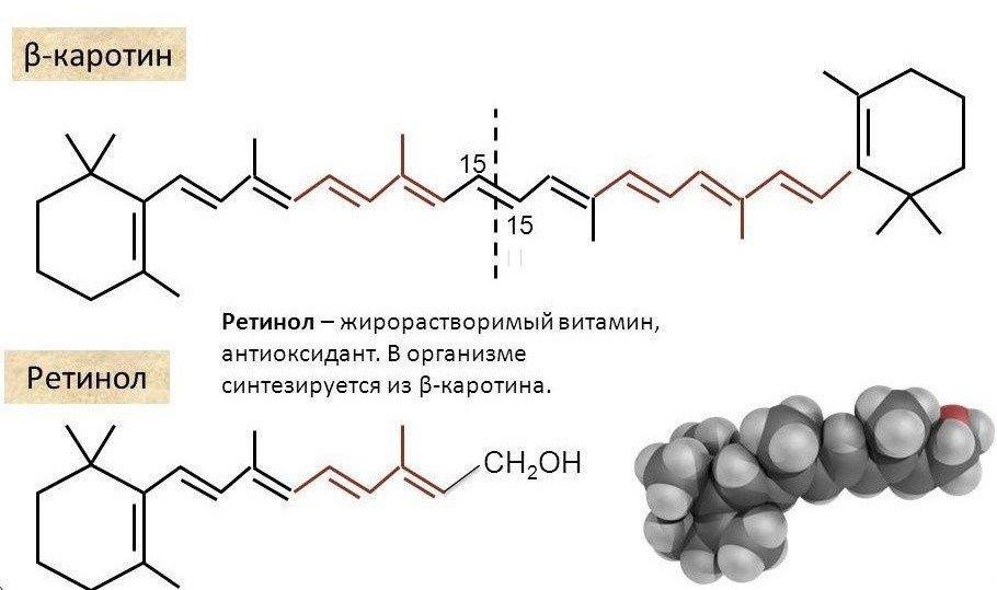 альфа, и бета-каротин